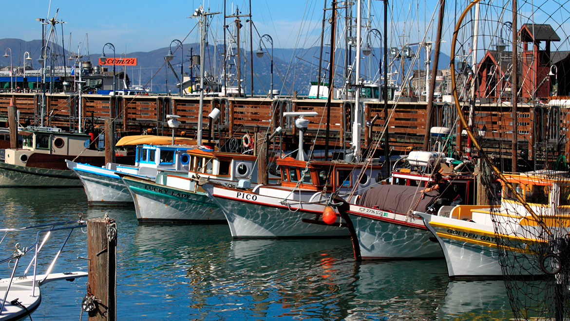 Hotels Near Fishermans Wharf San Francisco