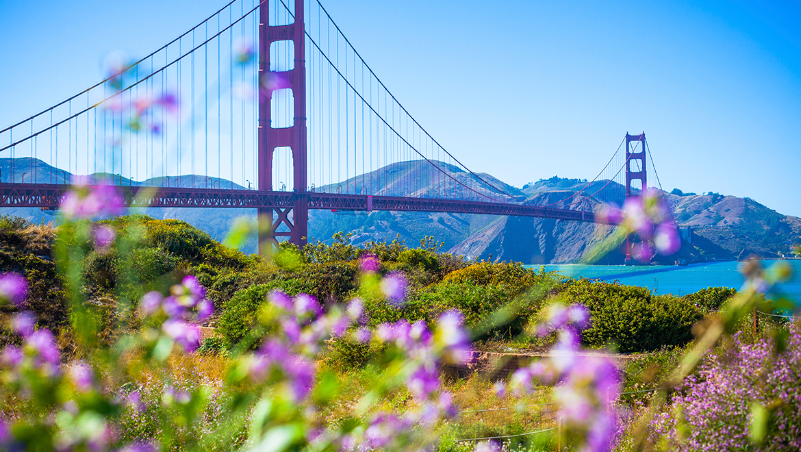 San Francisco Golden Gate Bridge Spring