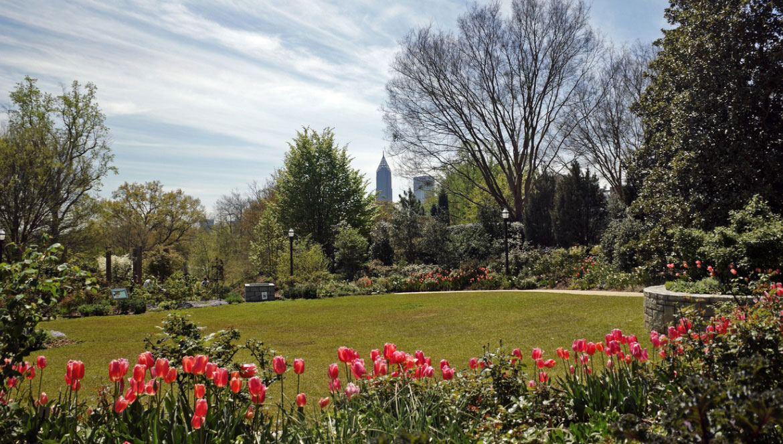 Amazing Atlanta Botanical Garden Photo Gallery