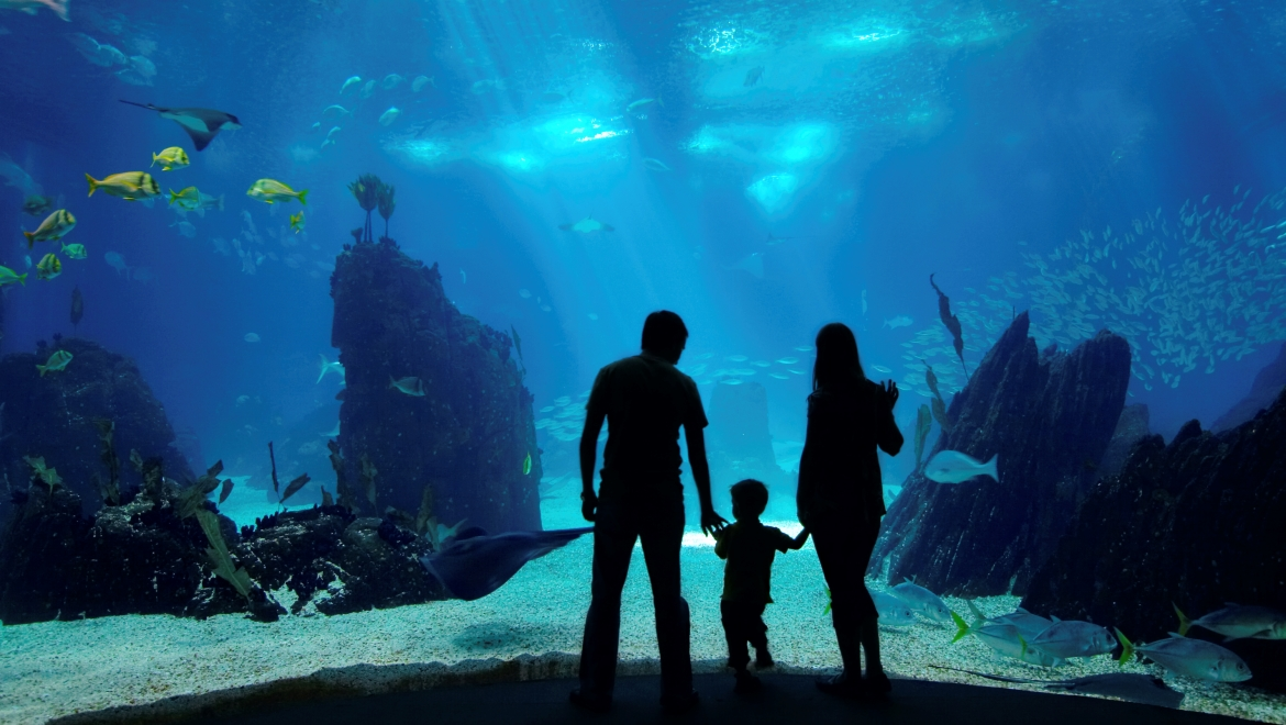 Family at Aquarium - Texas State Aquarium Package