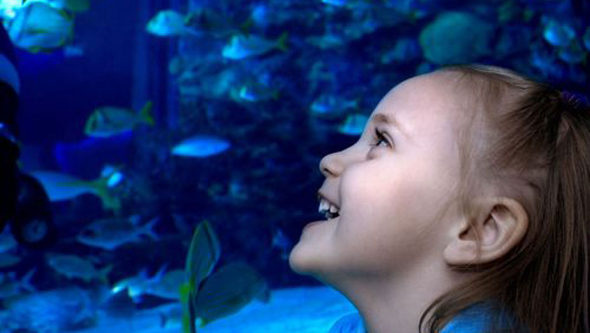 Girl at Aquarium