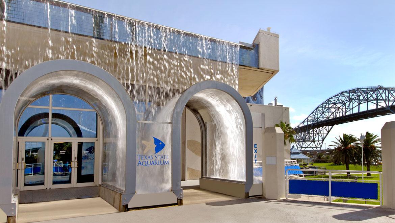 Corpus Christi Hotels | Omni Corpus Christi Hotel