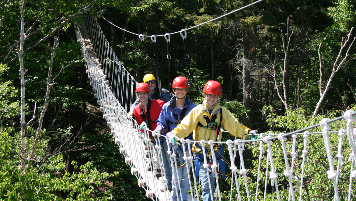 crossing the bridge in the canopy - Canopy
