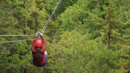 Canopy Tour During the Summer