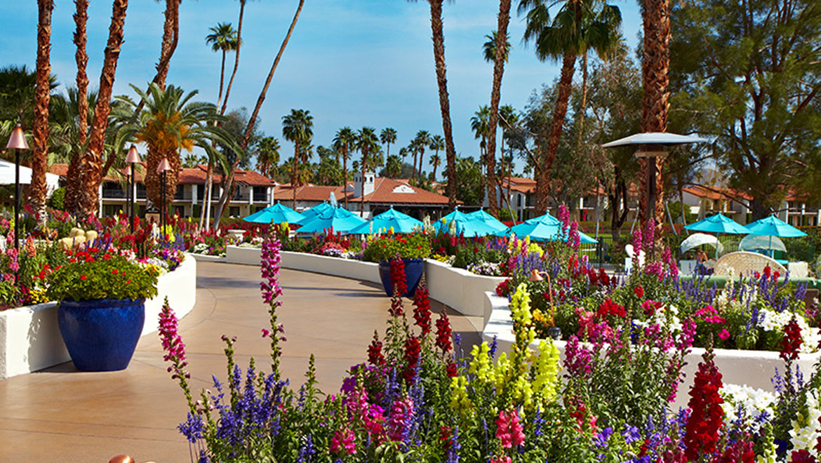 Omni Rancho flowers by the pool