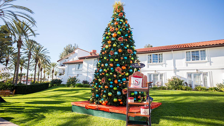 top christmas holiday activities in san diego omni la costa. Black Bedroom Furniture Sets. Home Design Ideas
