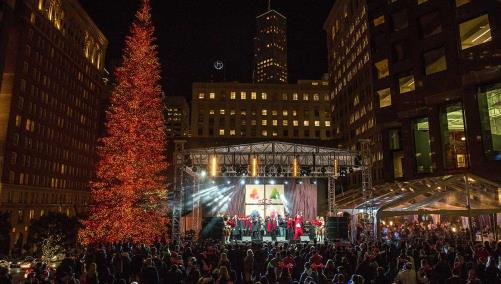 555 Tree Lighting