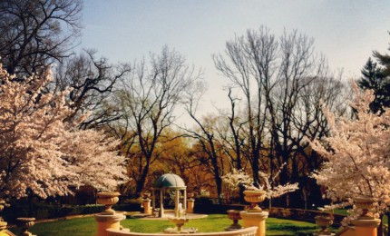 Omni Shoreham Readies For Washington DC Wedding Season