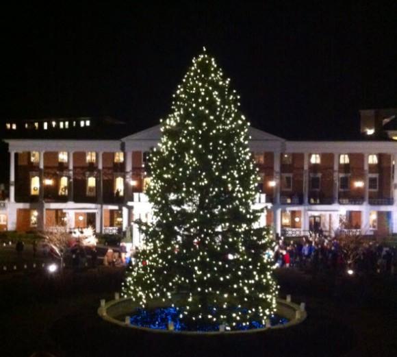 Omni Bedford Springs Tree