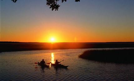 Amelia Island kayaking