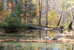 Spring In Virginia: Fly Fishing