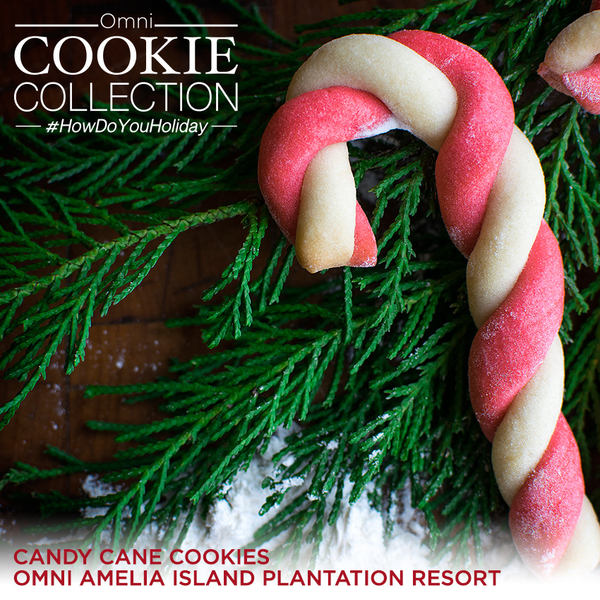 Omni Cookie Collection - Candy Cane Cookies