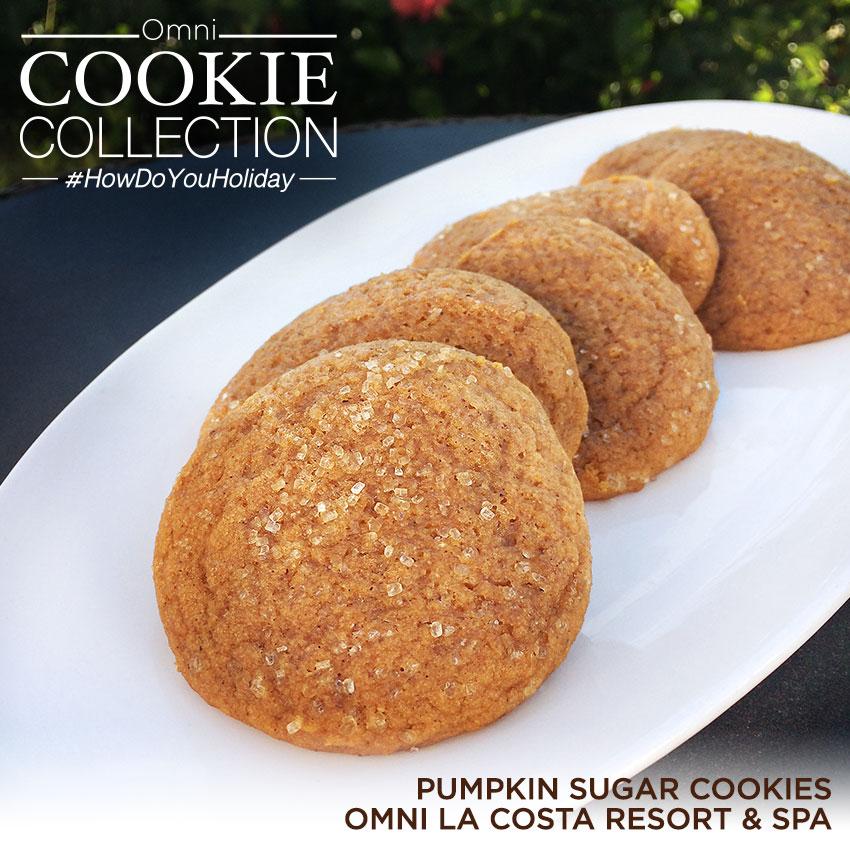 Omni Cookie Collection - Pumpkin Sugar Cookie