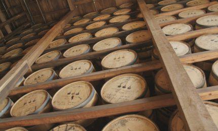 Distilling The Essence Of Louisville