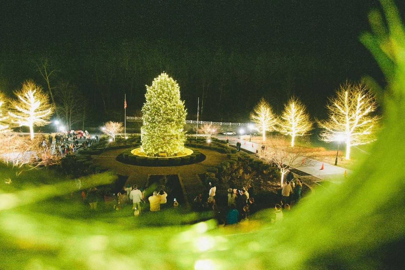 Grand Illumination Holiday Event