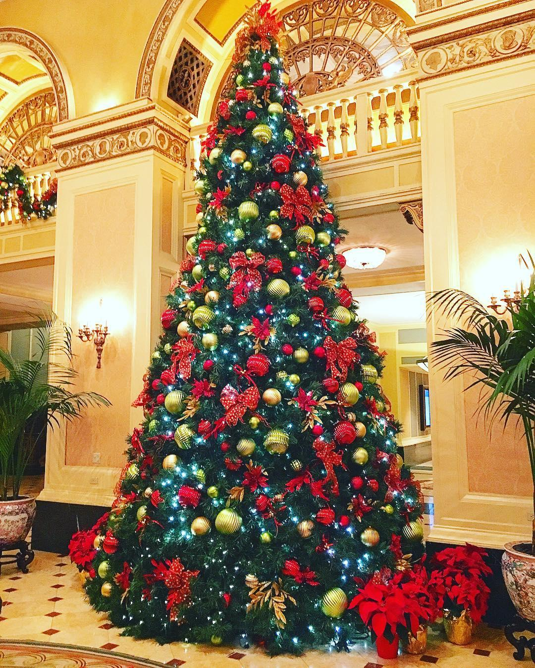 Holiday Christmas tree in Pittsburgh