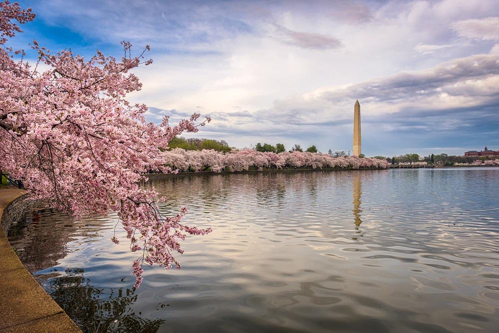 Washington DC, USA in spring season.