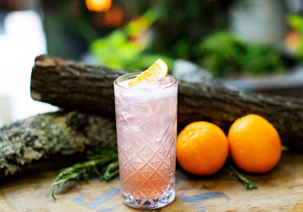 Dried Cranberry Spritzer Mocktail